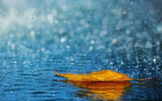 4f36b-lluvia