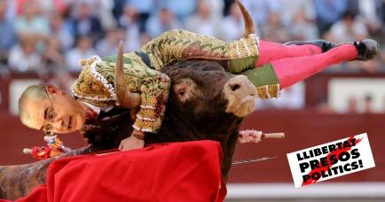 llarena toro PLUS