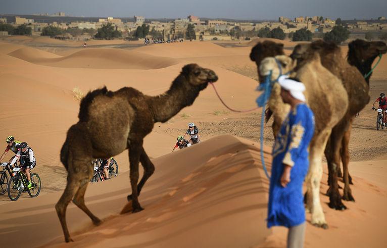 competicio-Titan-Desert-Merzouga-Marroc_2008609265_53507136_766x492