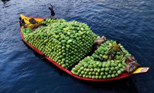 Sindries-riu-Dhaka-Bangladesh_2006209484_53417223_766x465