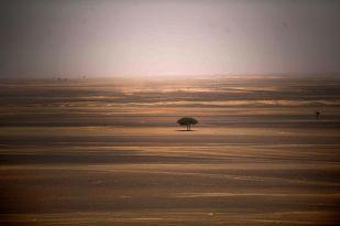Vista-general-voltants-Merzouga-Marroc_2008609262_53506844_766x509